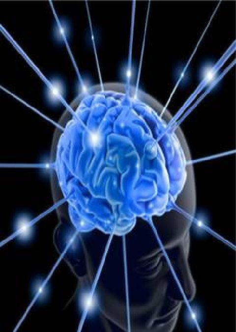 Un gène du cerveau trouvé chez l'Homme mais pas chez les singes