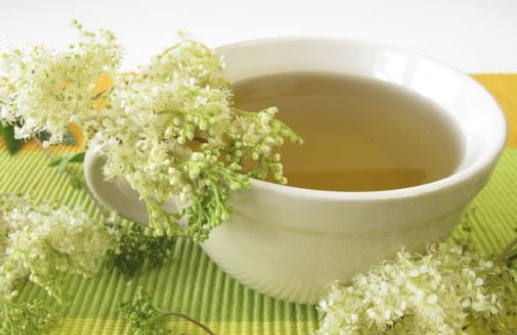 D couvrez cette plante drainante et anticellulite for Plante amincissante