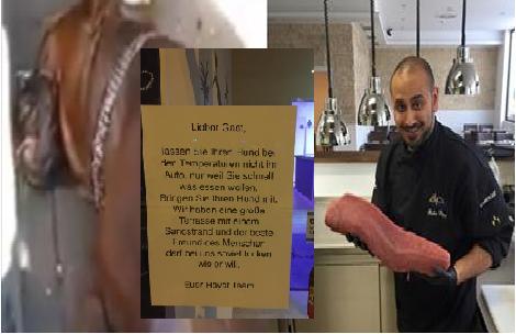 Son amour pour les chiens dépasse toutes les règles ! Regardez ce qu'il a fait dans son restaurant