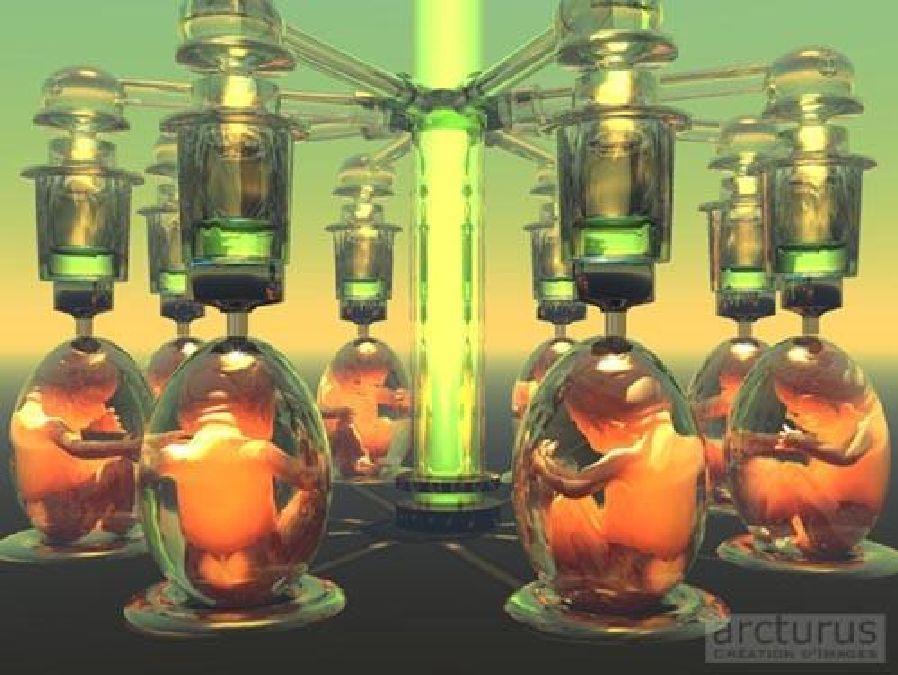 Human cloning: it is no longer a utopia!