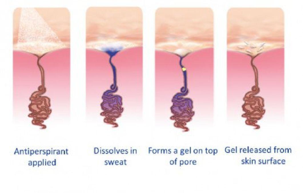 Voici ce qui arrive si vous arrêtez d'utiliser du déodorant pendant quelques semaines