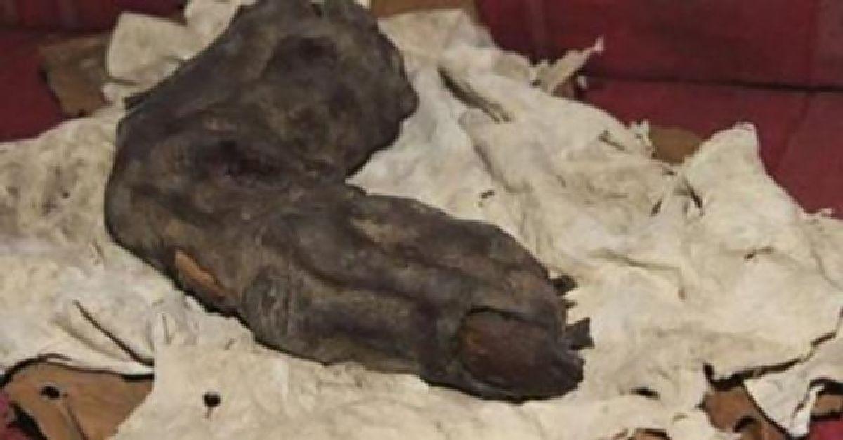 Un doigt de 38 centimètres découvert en Egypte : Preuve du Nephilim ?