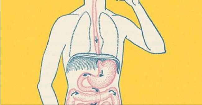 Ce qui arrive à votre corps lorsque vous sautez un repas