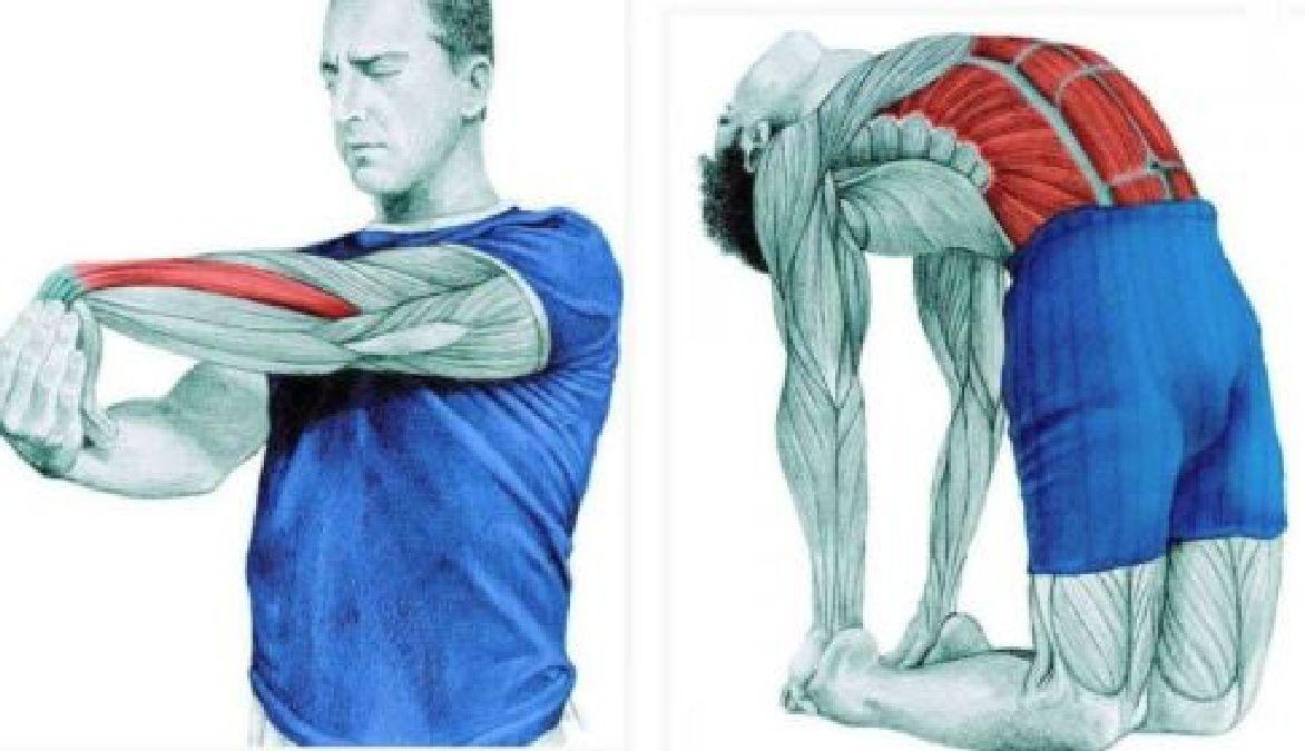 Exercices contre la douleur au bas du dos !