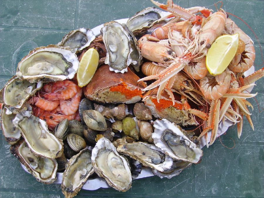 All you need to know about seafood and their nutritional benefits