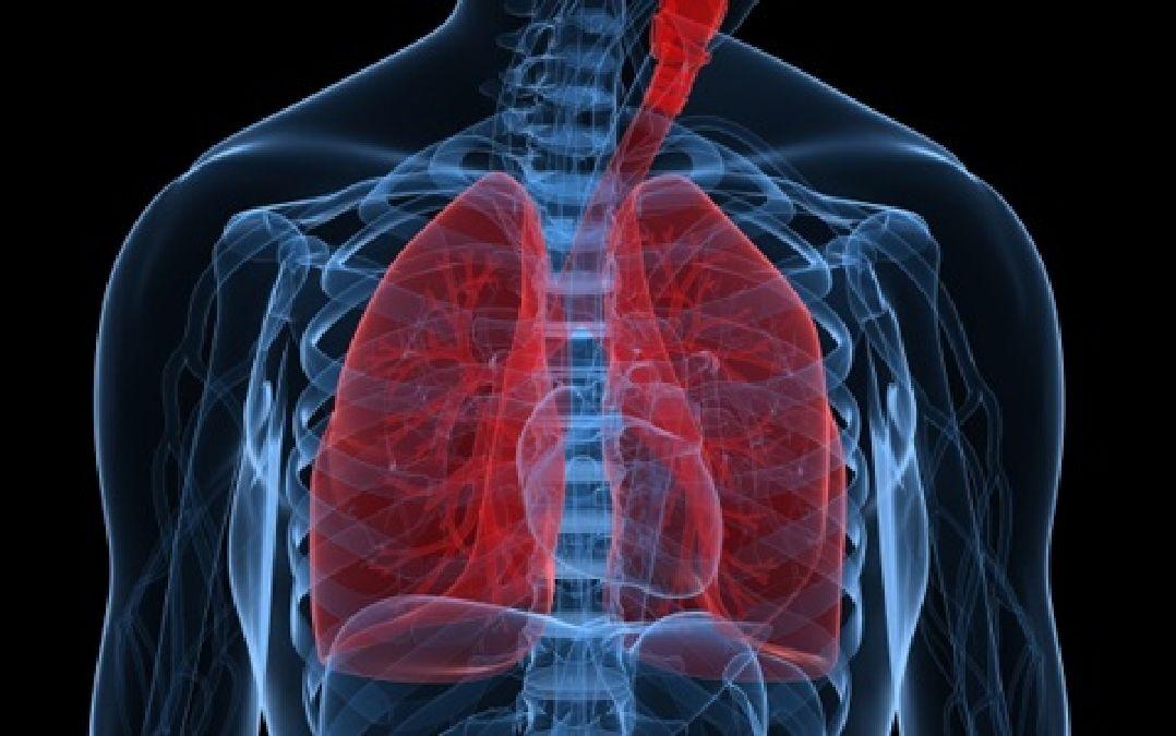 Découverte étonnante: cette vitamine traite l'inflammation des poumons en 3  heures!