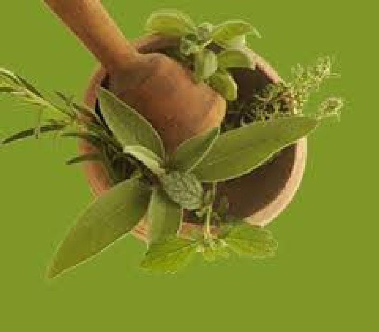 Natural medicines are leading medicines