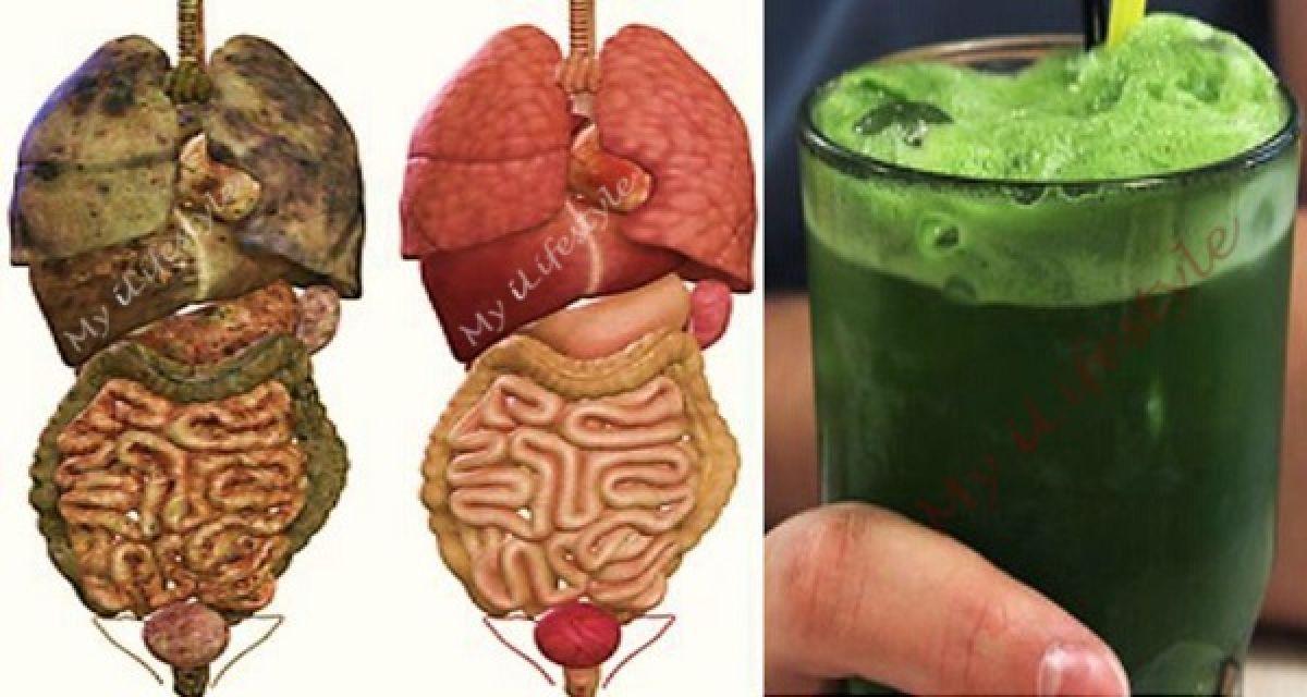 Boisson détox verte pour éliminer toutes les toxines et la graisse de votre corps
