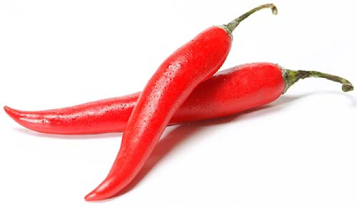 The hot pepper, powerful cure for cancer?