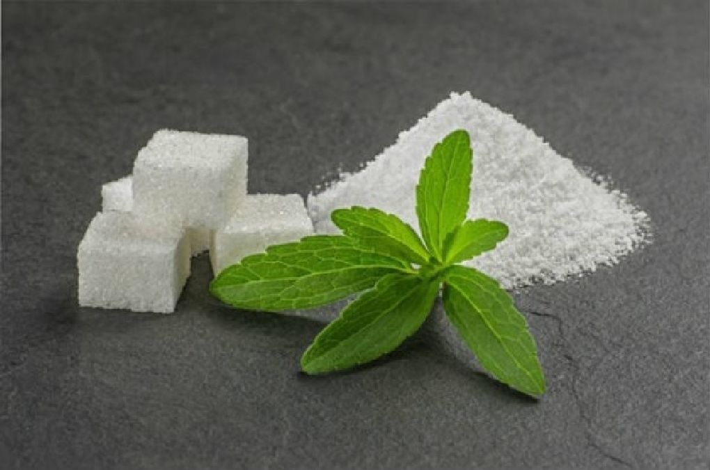 La plante qui élimine le besoin de nicotine, les calories et diminue le cholestérol !