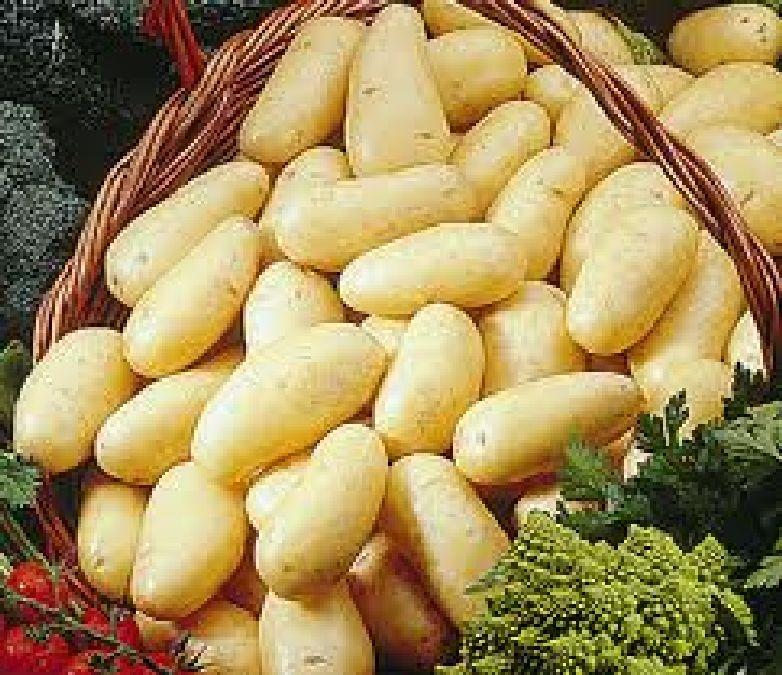 Comment conserver les pommes de terre plus longtemps?