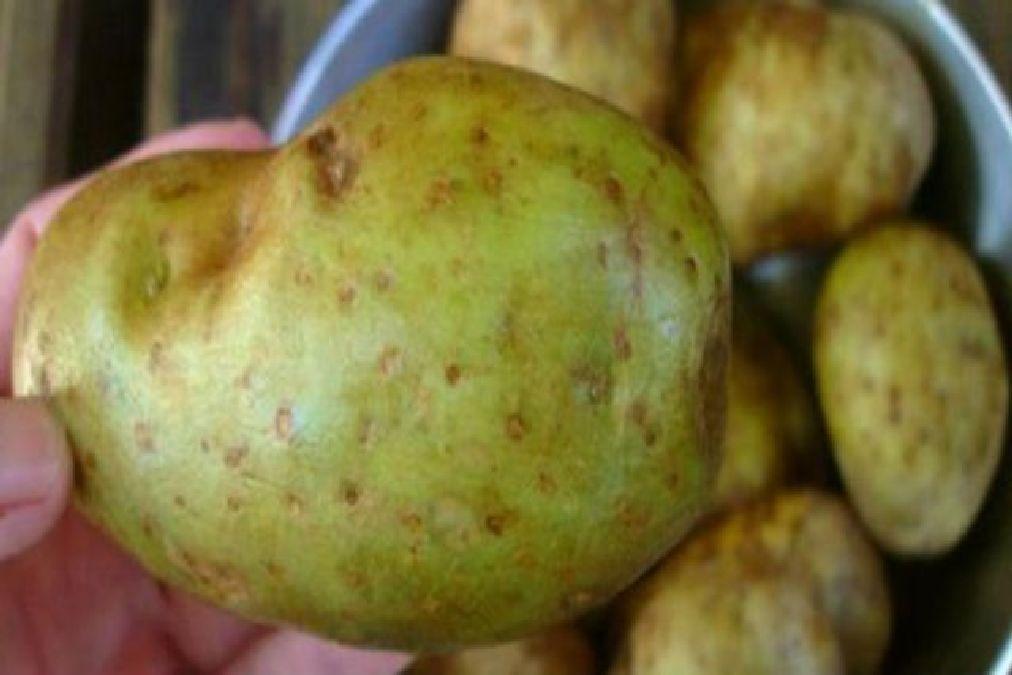 ATTENTION: si vous remarquez ceci sur vos pommes de terre, jetez-les immédiatement. Ça pourrait sauver votre vie…