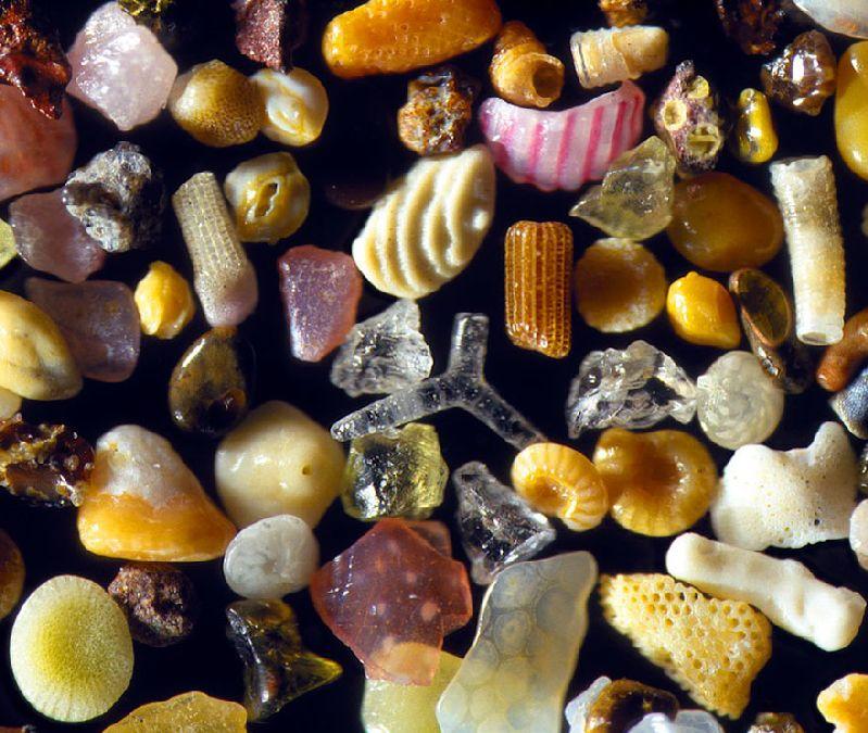 sable grossi 300 fois (2)