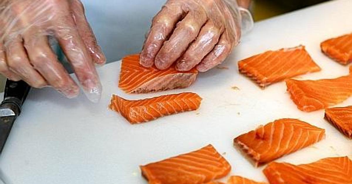 Les producteurs norvégiens avertissent: le saumon d'élevage peut être très dangereux pour la santé