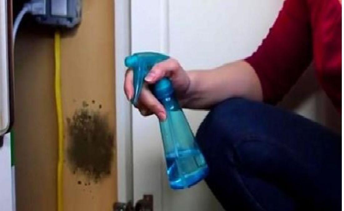 Débarrassez- vous définitivement de la moisissure avec  ce mélange astucieux fait maison !