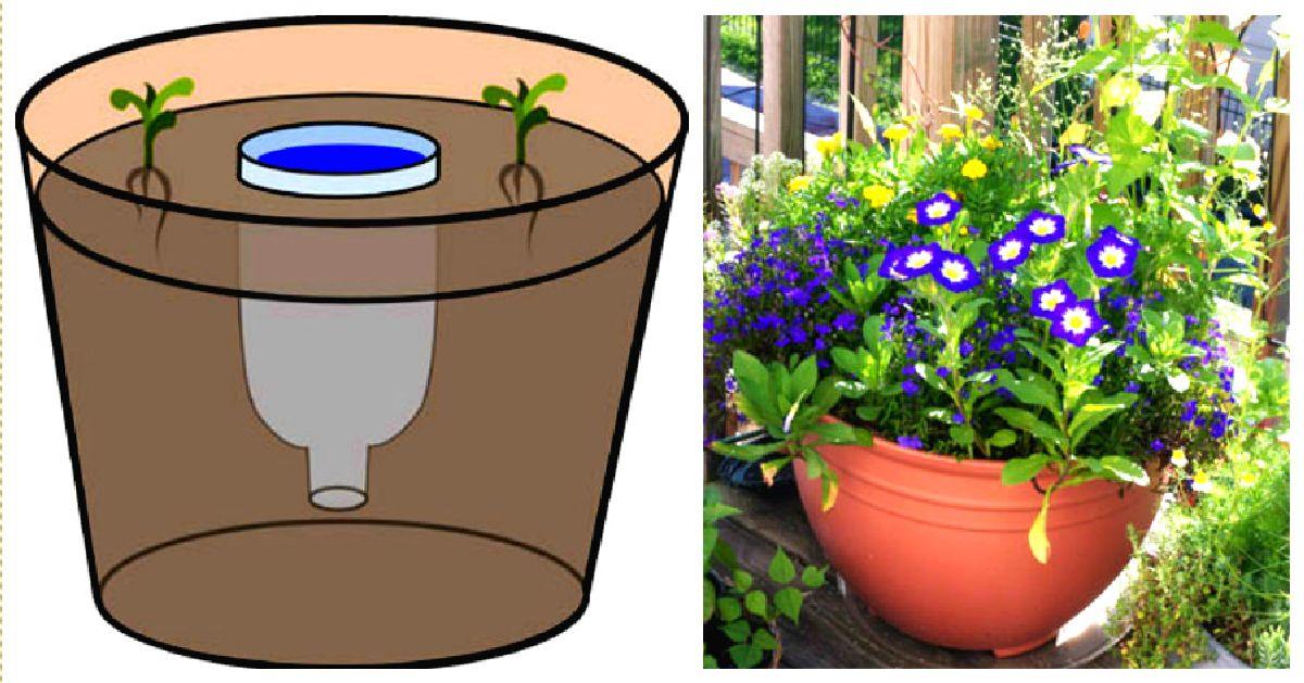 Pot-réservoir fait maison pour les longues journées chaudes