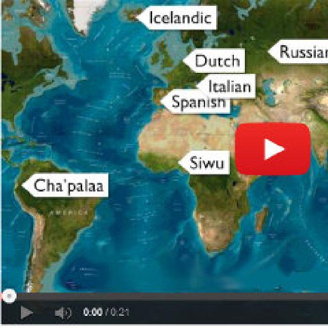 Un mot que vous pouvez comprendre dans toutes les langues!
