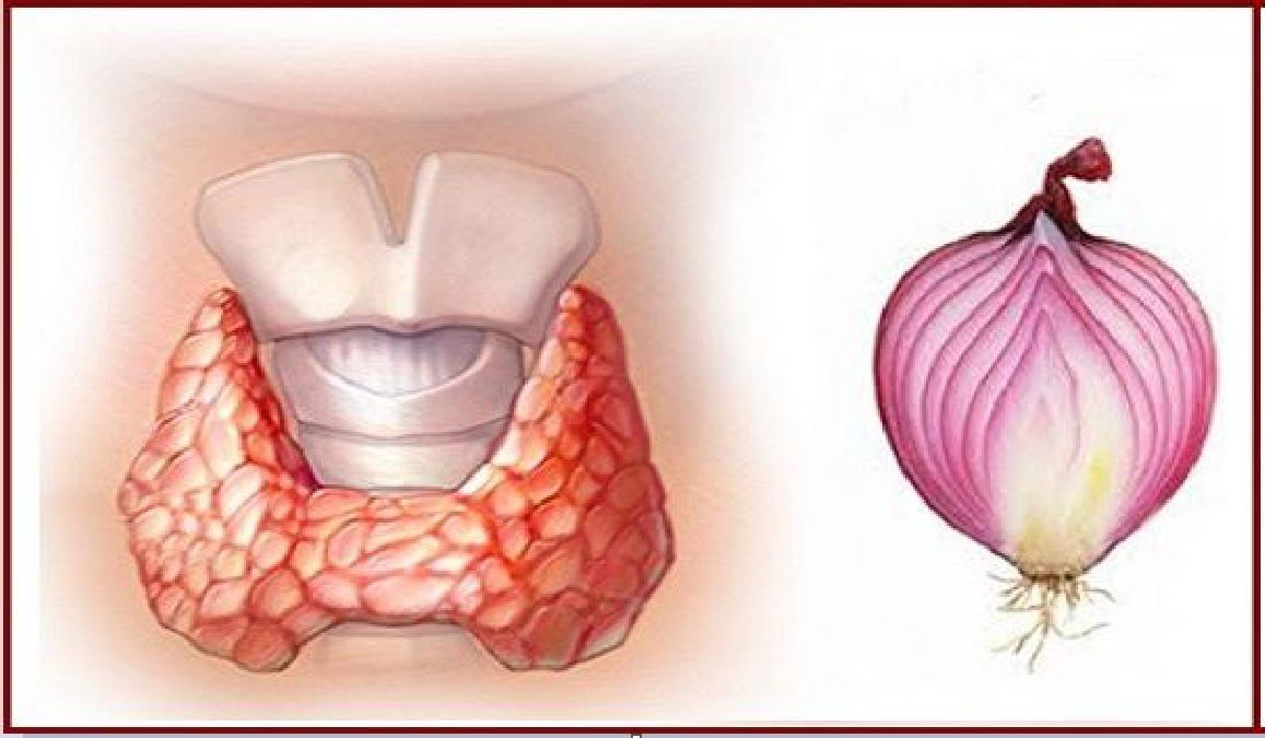 A red onion around the neck during the night! here's why