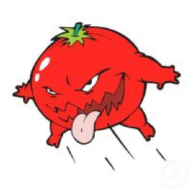 Jets de tomates pour accueillir Marzouki,Ben Jaâfer et la délégation ministérielle!