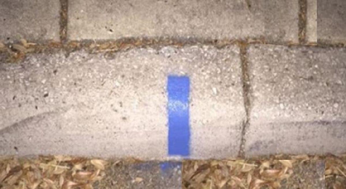 Lorsque vous voyez une ligne bleu sur le trottoir à l'extérieur de votre maison, voici ce que cela signifie !