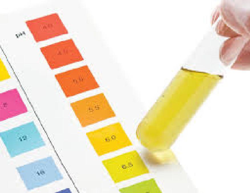 Santé et médecine: Que traduit la couleur de l'urine ?